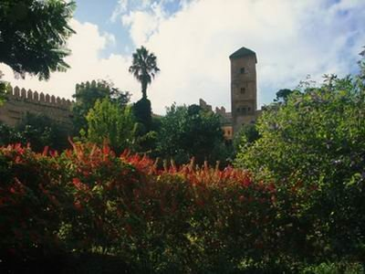 مدينه مراكش #المغرب