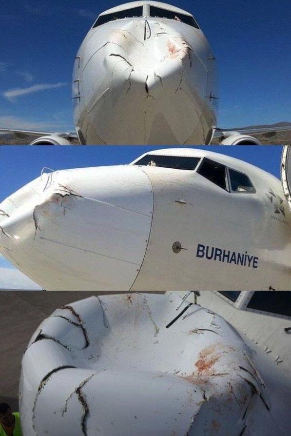 صور الأذى الهائل الناتج عن اصطدام طائر في طائرة بوينج ٧٤٧ تابعة للخطوط الجوية التركية