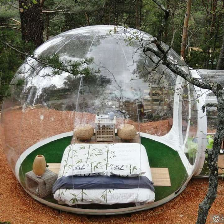 فندق في الغابة