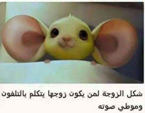 شكل الزوجة لما زوجها يحكي بالتليفون بصوت واطي والله لتنتفو #نهفات
