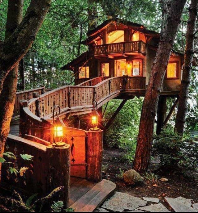 البيوت المشيدة على الأشجار صوره رقم 4