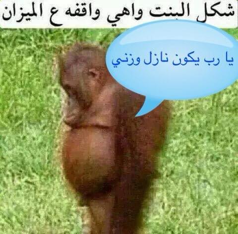 شكل البنت واهي واقفة ع الميزان يارب يكون نازل وزني #نهفات