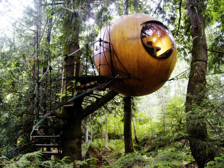 فندق فري سبيريت #فانكوفر #كندا الإقامة داخل بيت خشبي يقع في أعالي الأشجار داخل الغابة