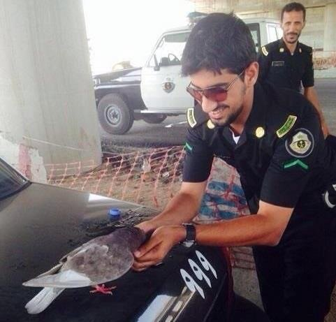 صورة ضابط أمن سعودي يطعم حمامة من أكثر الصور تناقلا على وسائط التواصل