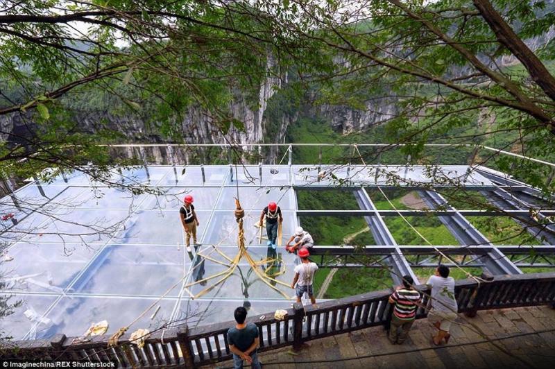 #بالصور أكبر ممر زجاجي في العالم #غرد_بصوره صوره 3