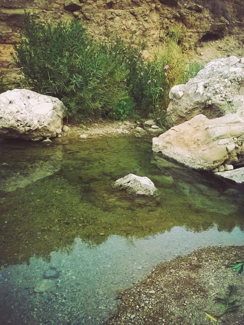 وادي الوالة #مأدبا #الأردن -صورة 10