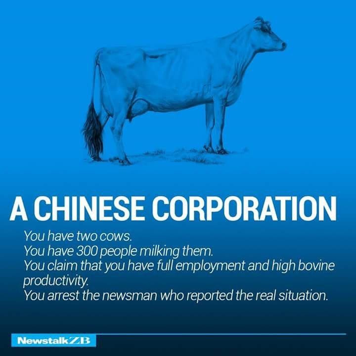A Chinese Corporation Defined