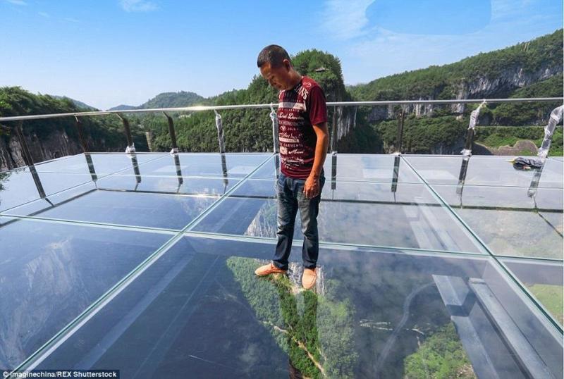 #بالصور أكبر ممر زجاجي في العالم #غرد_بصوره صوره 1
