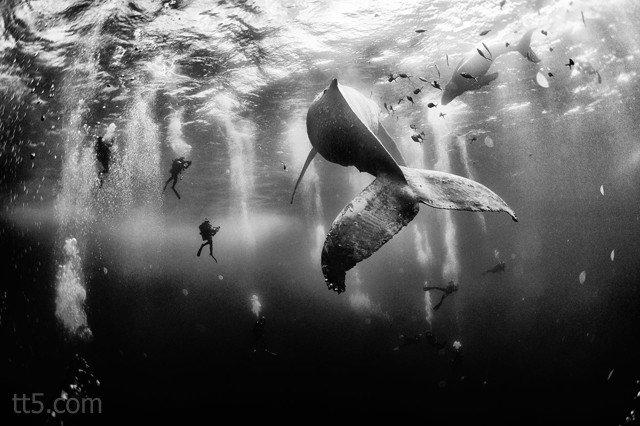 صور الفائزون في مسابقة ناشونال جيوغرافيك لصور المسافرين #غرد_بصورة -صورة 3