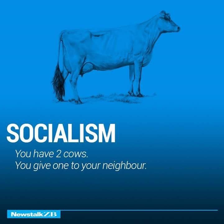 Socialism Defined