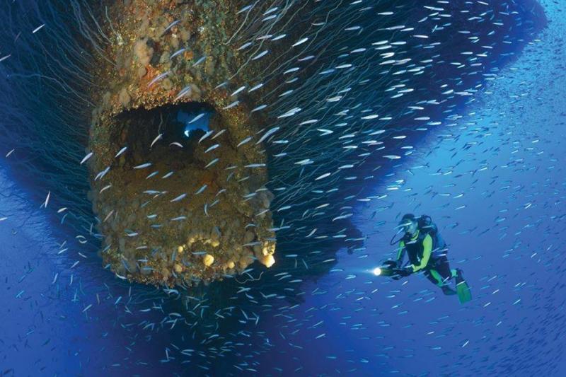 سفينة غارقة جزئها السفلي يشبه فم سمكة عملاقة #غرد_بصورة -صورة 1