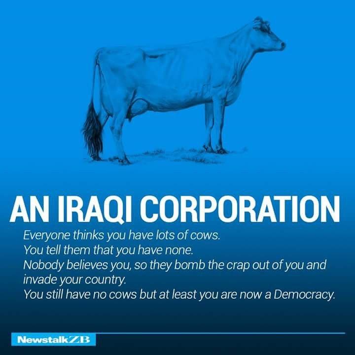 An Iraqi Corporation Defined