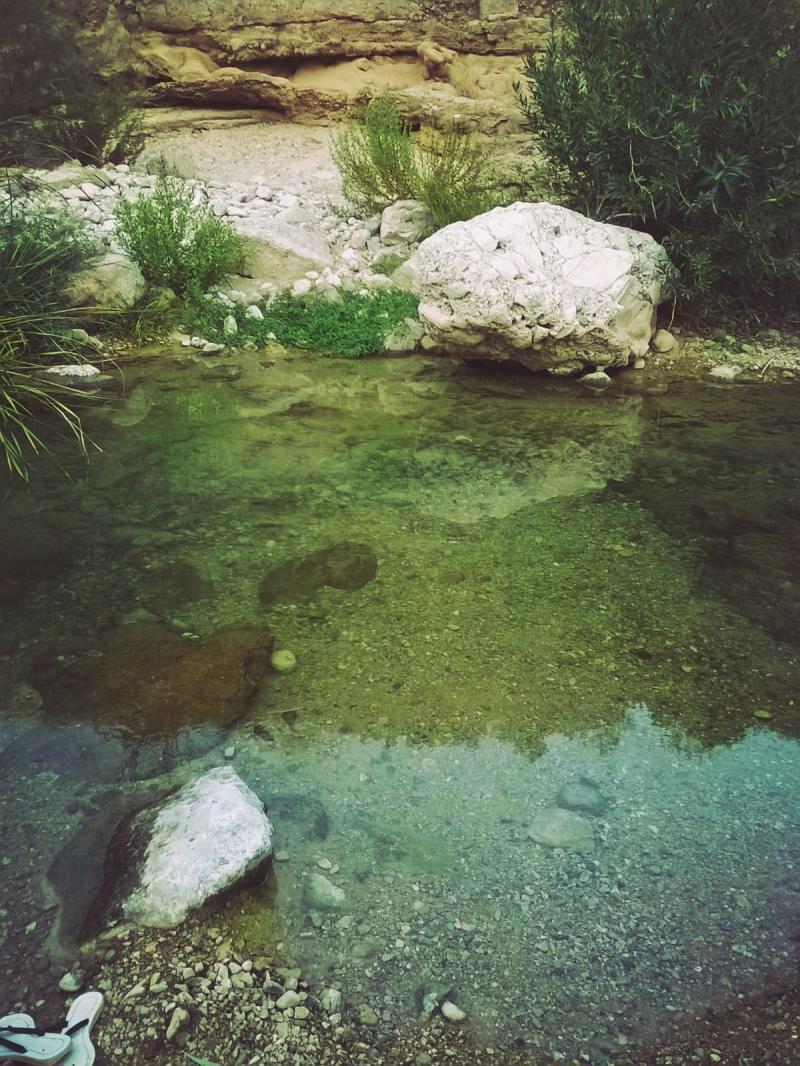 وادي الوالة #مأدبا #الأردن -صورة 9