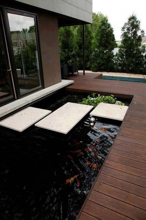 من اجمل تصاميم احواض اسماك الزينة في فناء البيت #غرد_بصوره صوره رقم5