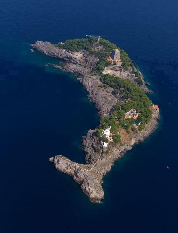 جزيرة الدولفين فى #إيطاليا صوره 1
