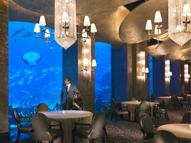 تناول السمك بين السمك... مطعم أوسيانو #دبي #مطاعم