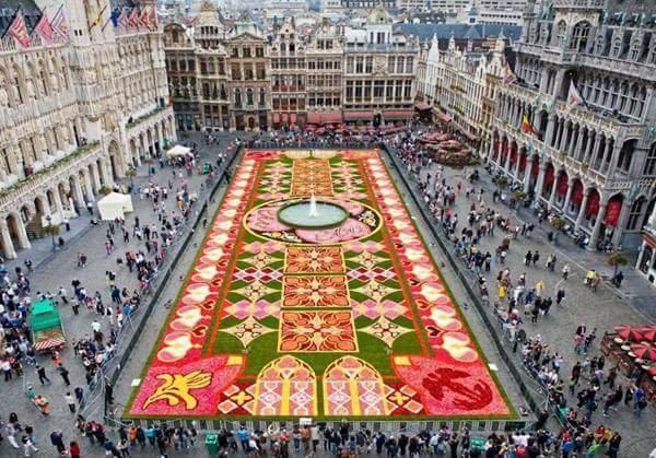 سجادة الزهور في #بروكسيل تتكون من 700000 زهرة #منوعات #حول_العالم صوره 5
