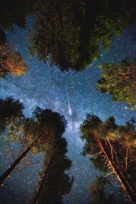 صور رائعة للنجوم ليلا #غرد_بصوره صوره رقم 2