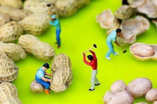 فن الدمج بين الطعام والمجسمات الصغيرة جدا لخلق قصص - صورة ٦