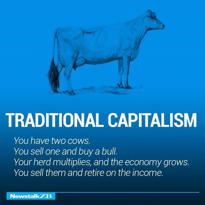Traditional Capitalism Defined