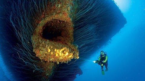 سفينة غارقة جزئها السفلي يشبه فم سمكة عملاقة #غرد_بصورة -صورة 2