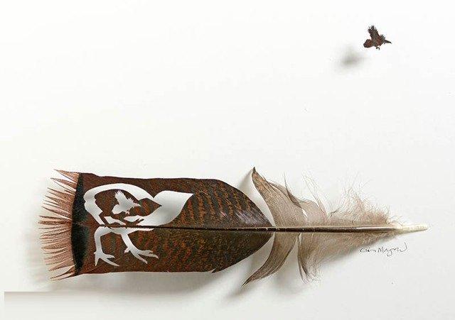 أعمال فنية رائعة من ريش الطيور #غرد_بصورة -صورة 6