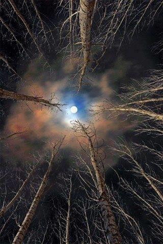 صور في غاية الروعة للقمر #غرد_بصوره صوره رقم 1