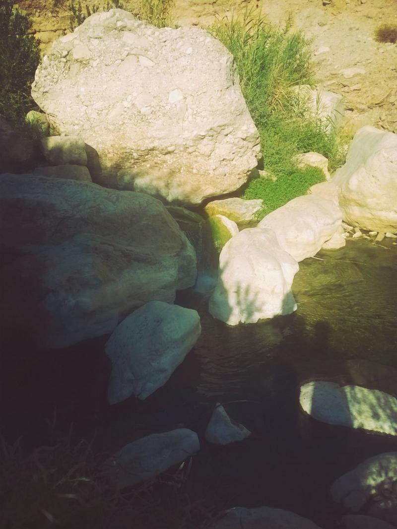 وادي الوالة #مأدبا #الأردن -صورة23
