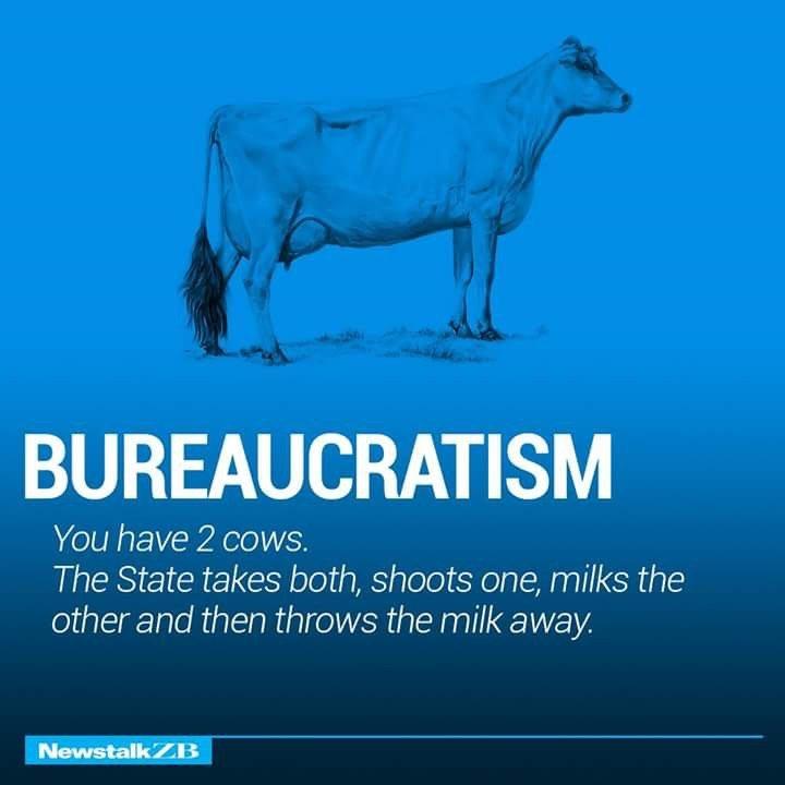 Bureaucratism Defined