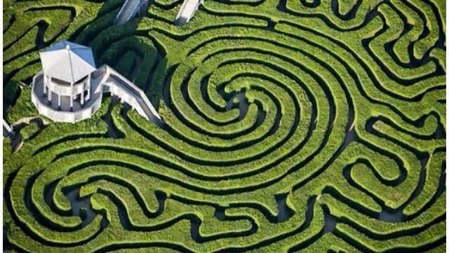 منظر جوي لحقول خضراء على شكل لوحات فنيّة مدهشة موجودة في بريطانيا #غرد_بصوره صوره رقم 2