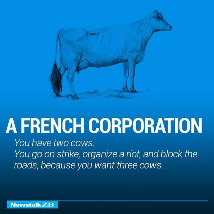 A French Corporation Defined