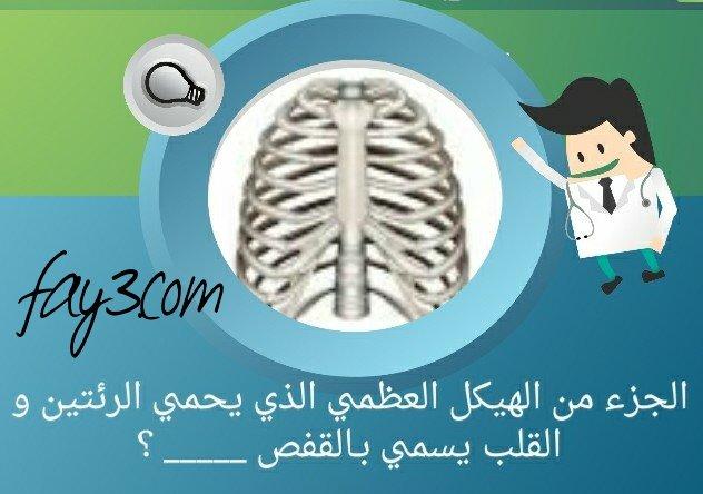 ماذا يسمى الجزء من الهيكل العظمي الذي يحمي الرئتين والقلب؟ #لغز