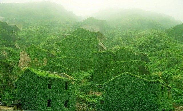 الأشجار تغطي قرية مهجورة في الصين #غرد_بصورة -صورة 1