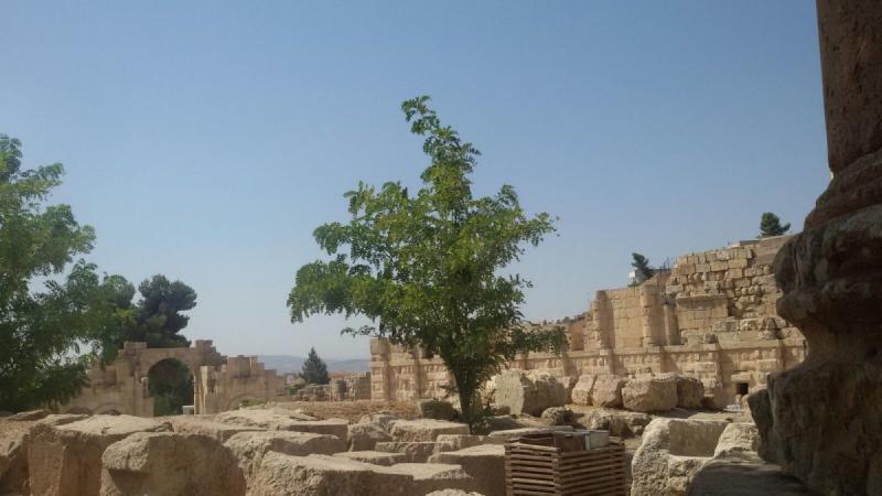 ساحة جرش #جرش #الأردن - صورة 5