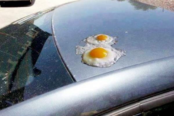 مواطن أردني يقلي البيض على سيارته بعد الارتفاع غير المسبوق للحرارة في منطقة #العقبة