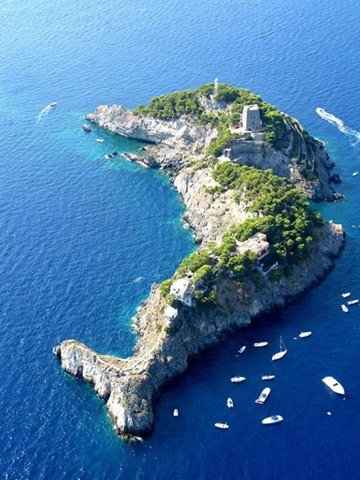 جزيرة الدولفين فى #إيطاليا صوره 5