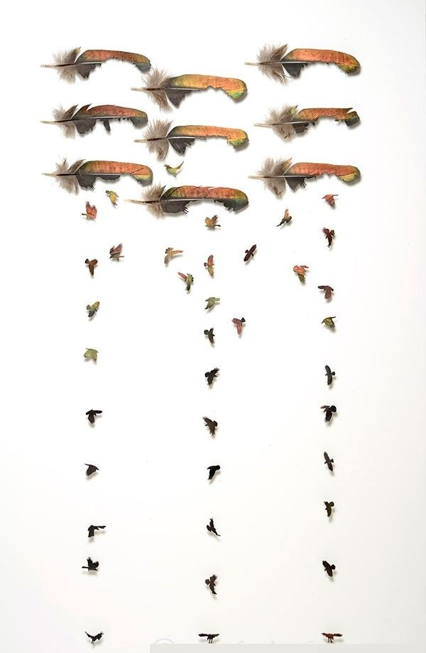 أعمال فنية رائعة من ريش الطيور #غرد_بصورة -صورة 10