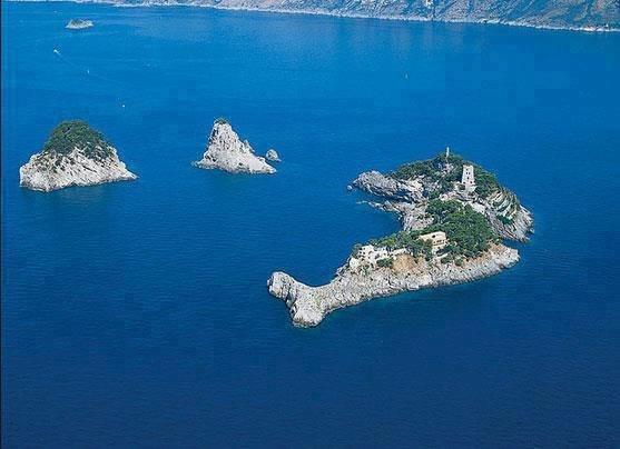 جزيرة الدولفين فى #إيطاليا صوره 2