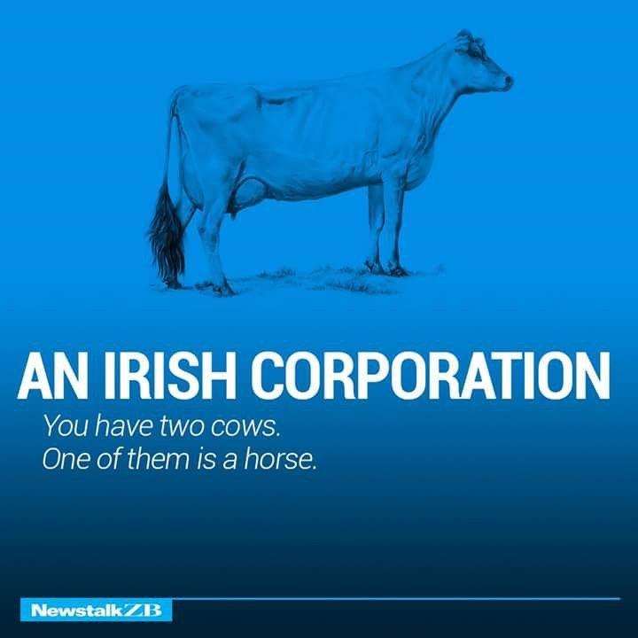 An Irish Corporation Defined