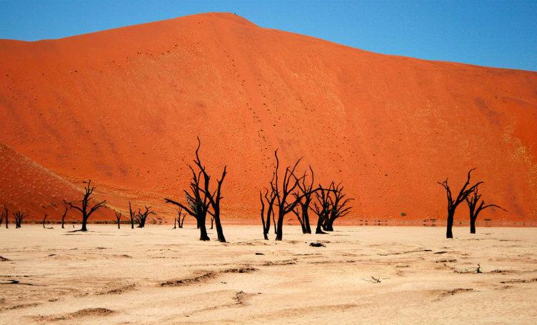 صحراء ناميب #ناميبيا