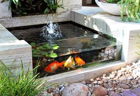 من اجمل تصاميم احواض اسماك الزينة في فناء البيت #غرد_بصوره صوره رقم8