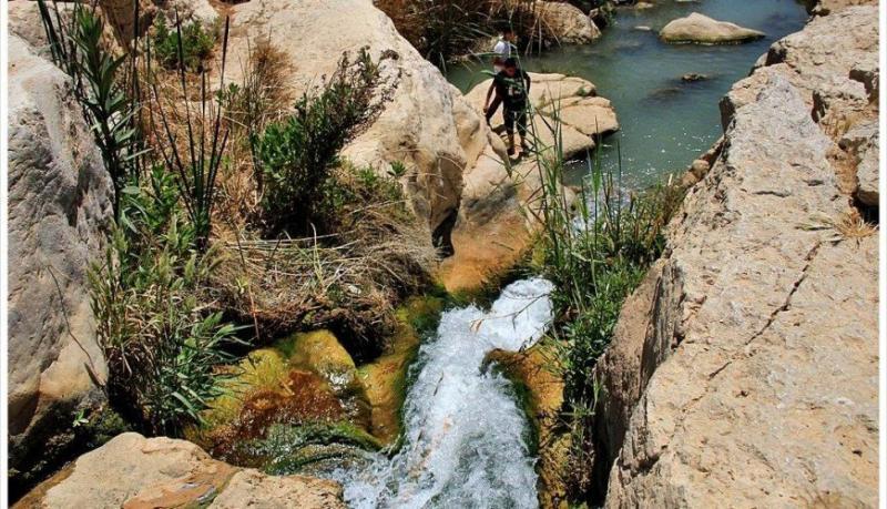 وادي الوالة #مأدبا #الأردن -صورة 6