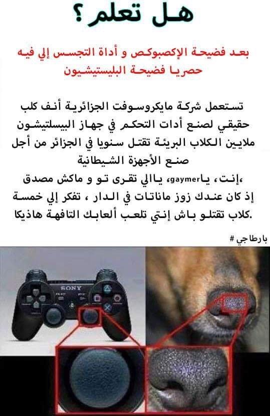 تعريف الجحشنة - بيقلك جهاز البيسلتيشون من شركة مايكروسوفت الجزائرية
