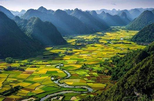 جمال وروعة حقول الأرز في #فيتنام صوره 6