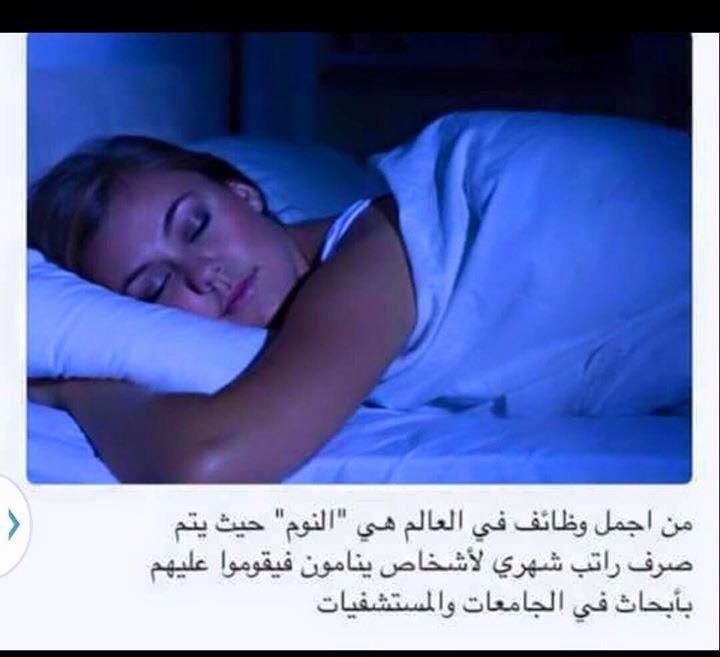 وظيفة النوم أغرب الوظائف العالم برواتب خيالية #غرد_بصورة