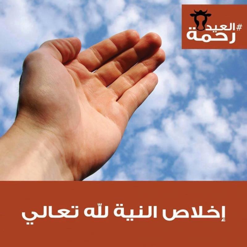 تعاليم الرسول صلى الله عليه وسلم في آداب الذبح في #عيد_الاضحى #العيد_رحمة -7