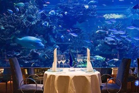 مطعم المحارة في فندق #برج_العرب #دبي