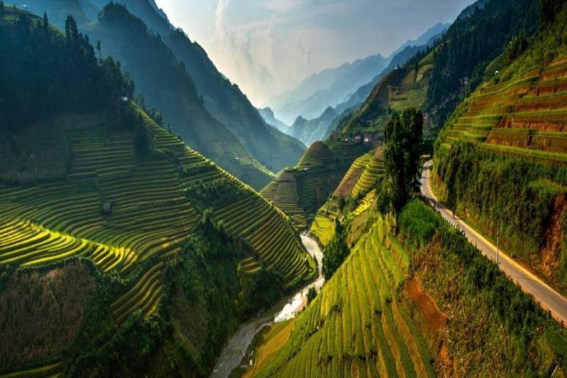 جمال وروعة حقول الأرز في #فيتنام صوره 2