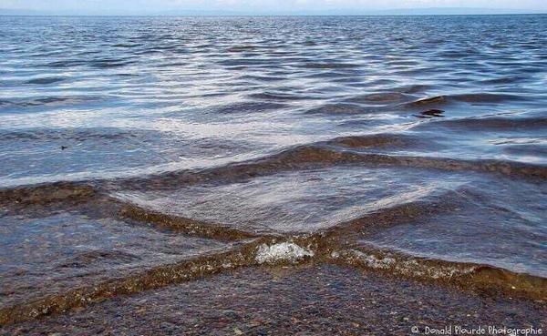 ظاهرة غريبة تلتقي فيها موجات مائلة تجعل البحر يبدو وكأنه منقسم إلى مربعات في #فرنسا #غرد_بصورة 1