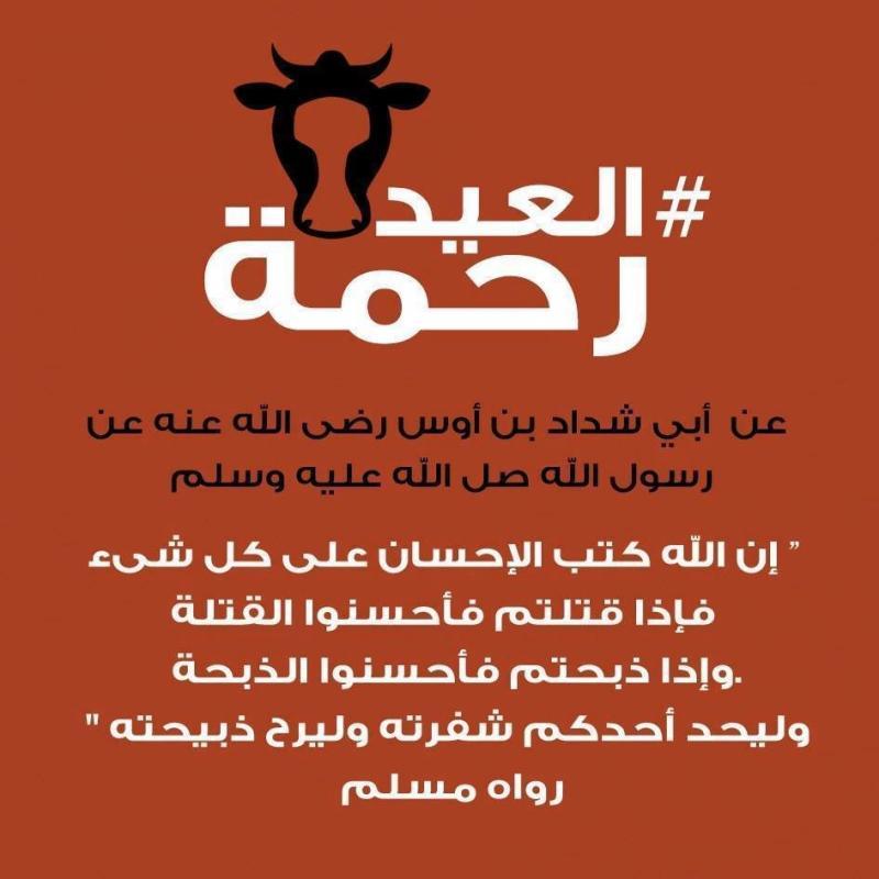 تعاليم الرسول صلى الله عليه وسلم في آداب الذبح في #عيد_الاضحى #العيد_رحمة -1